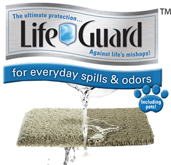 Life Guard™ | For Everyday Spills & Odors